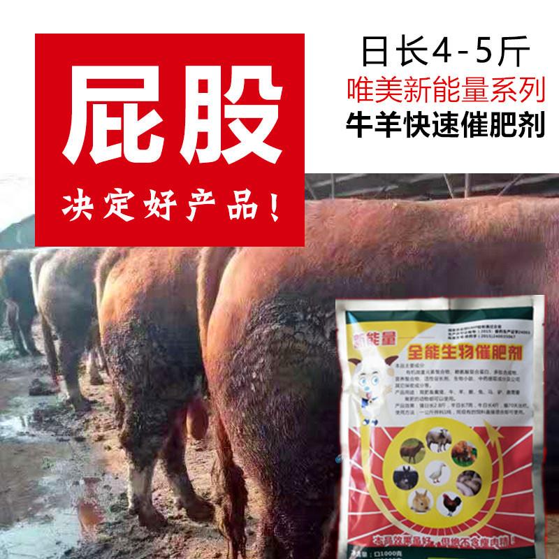 肉牛后期催肥精料配方