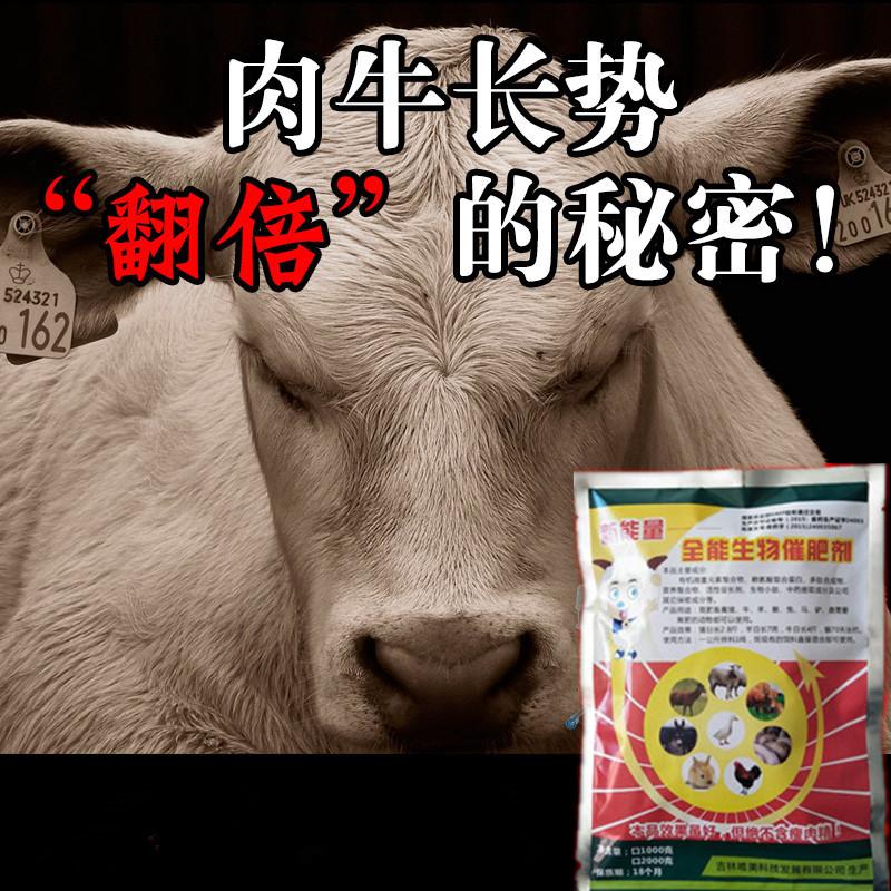 牛羊专用催肥剂那种效果好?