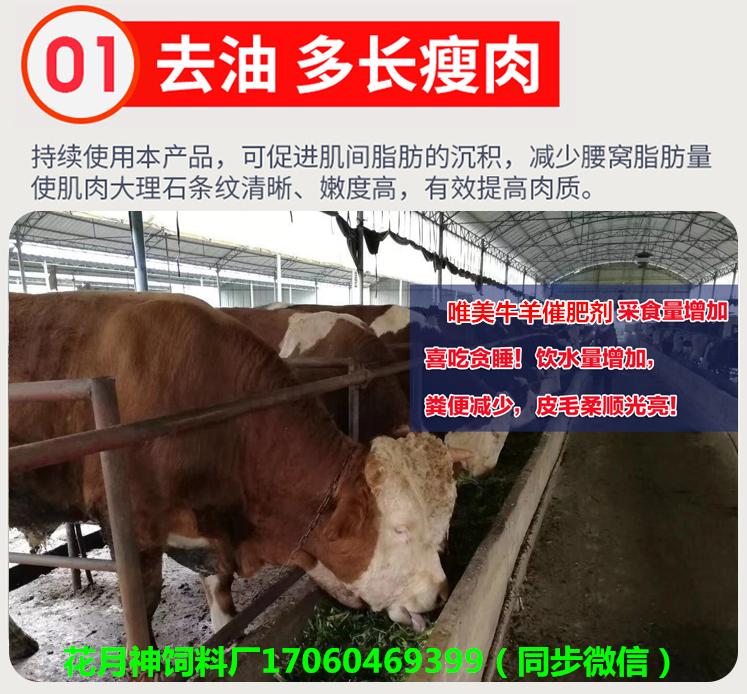 牛喂什么长得快?养牛用啥牌子催肥剂效果好?