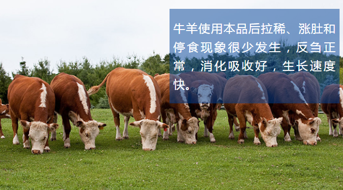 牛羊催肥增肥剂产品