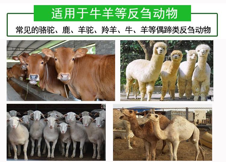 唯美牛羊催肥增肥剂价格实惠