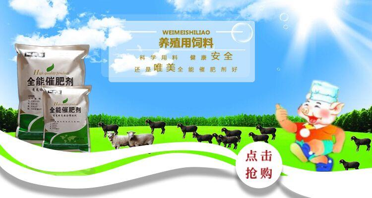 牛羊速效催肥剂产品