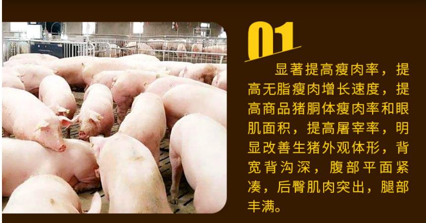猪催肥剂批发哪家强
