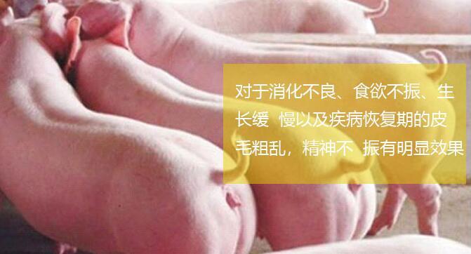 猪饲料中药添加剂用什么牌子的好?