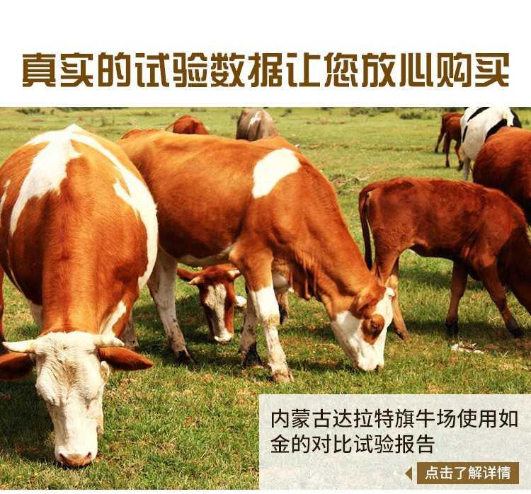 牛吃什么长骨架子快?肉牛喂什么催肥剂长肉好?