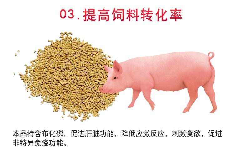 猪催肥剂批发优惠促销