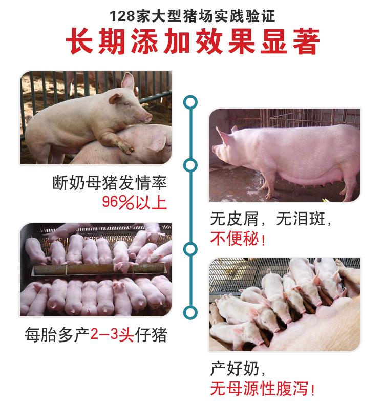 猪用催肥激素价格实惠