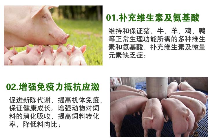 厂家推荐猪催肥剂哪家强